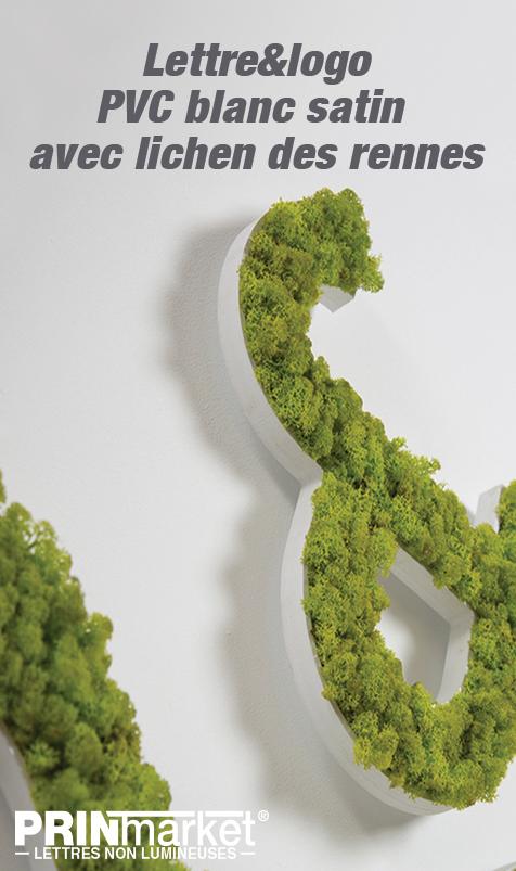 Lettre&logo PVC blanc satin avec lichen des rennes (8 coloris au choix)